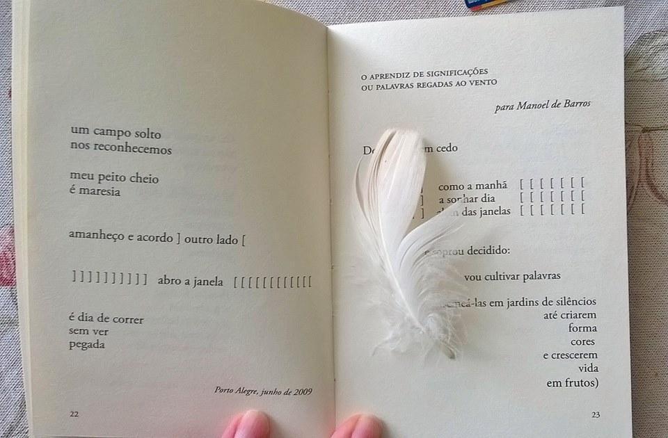 crítica da escritora Silvia Schmidt sobre Canção daLiberdade
